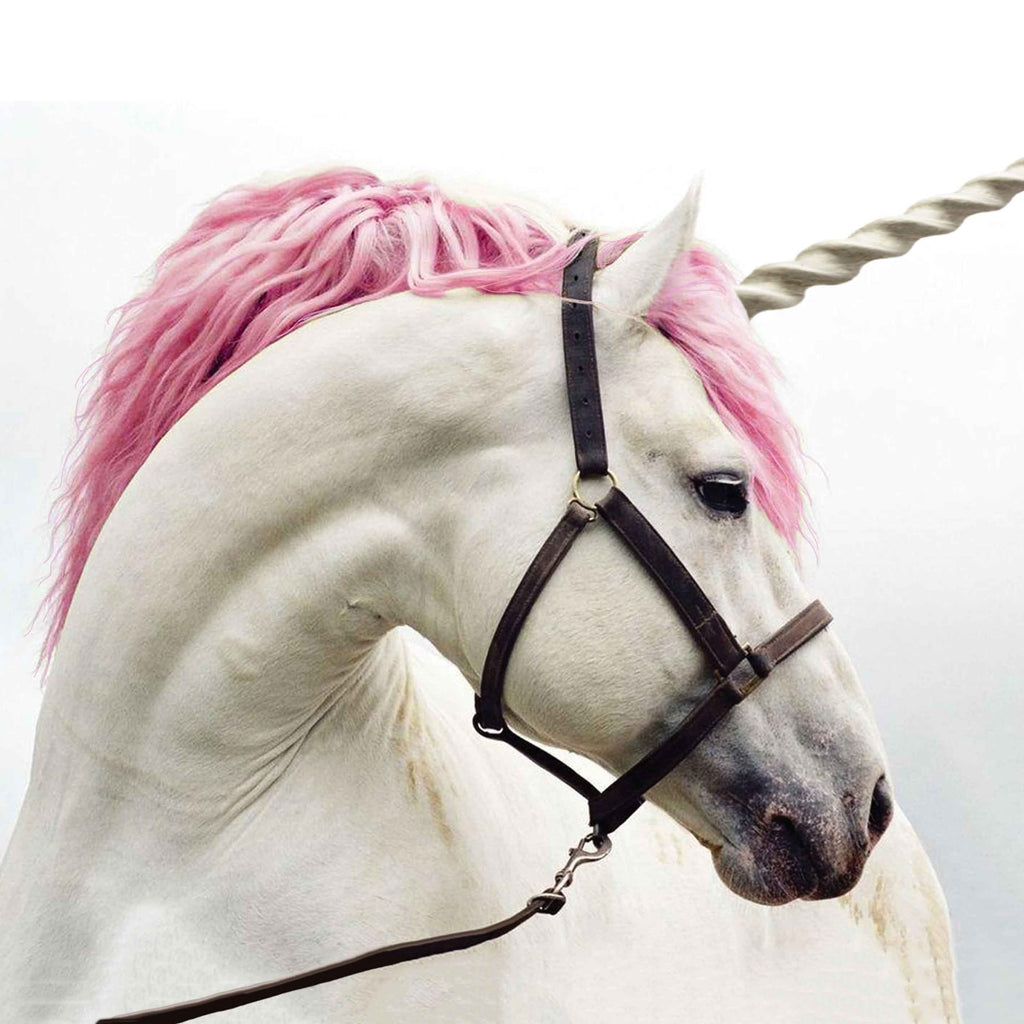 Image of a dreamy white unicorn with a pink mane