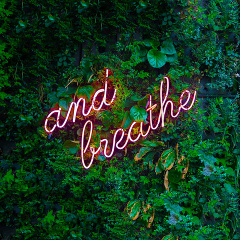 Adult Tee - Women - And Breathe