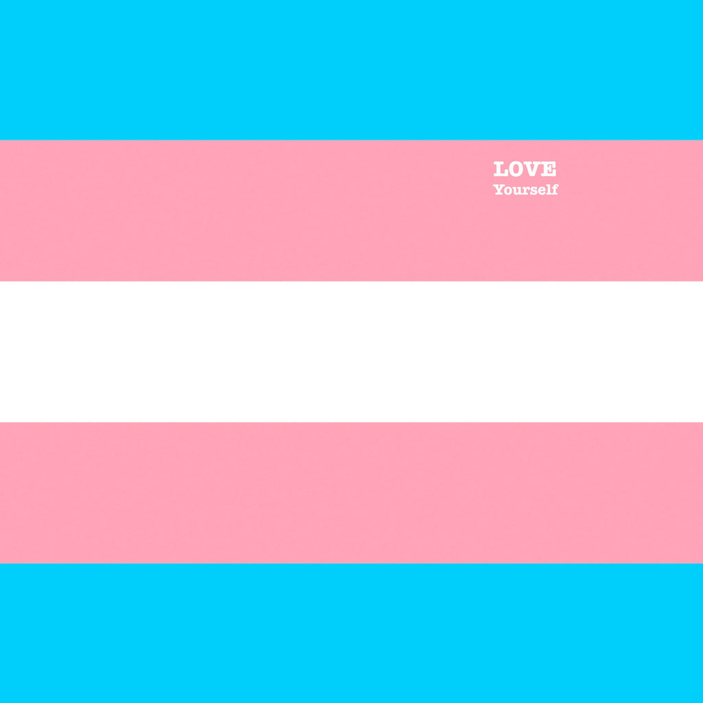 Transgender pride flag print with the words LOVE Yourself