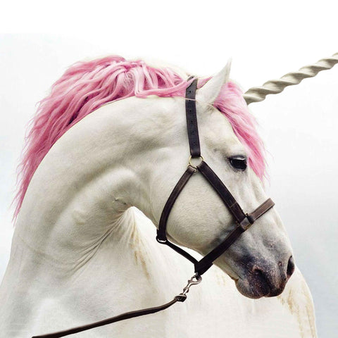 Image of a white unicorn with pink mane