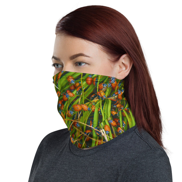 All-In-One Mask - Ladybugs