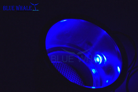 LED Light Ring Blue Stainless Steel Cup Holder Drink Drain Perfect For Boat Led Light - Blue Whale Marine Hardware