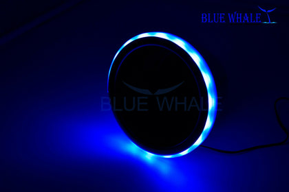 LED Light Ring Blue Stainless-Steel Cup Drink Holder w/ Drain BL99310757 - Blue Whale Marine Hardware
