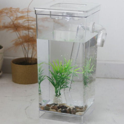 Ecological Mini Fish Tank (Self-Cleaning Grass)
