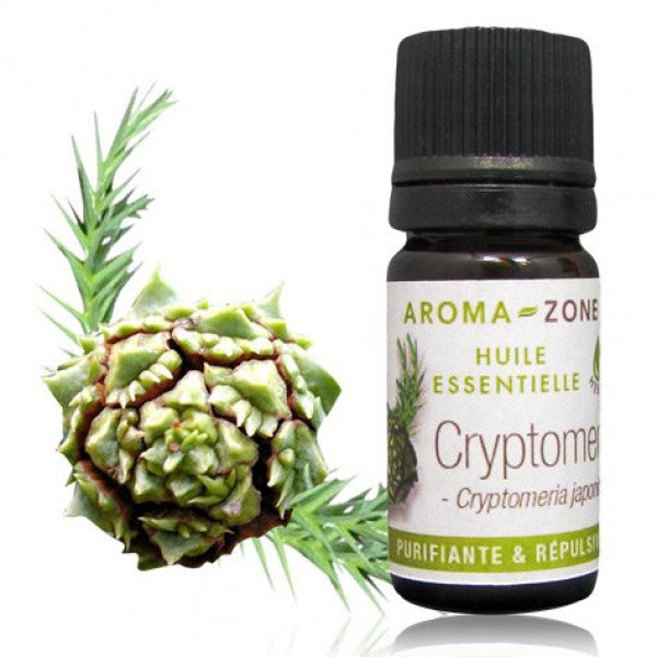HE Cryptomeria 5ml