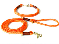 Standard Leash 6ft