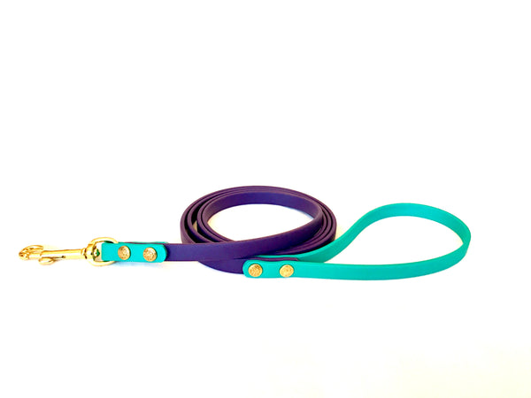 Dual Colour Leash