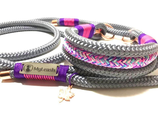 Martingale Leash