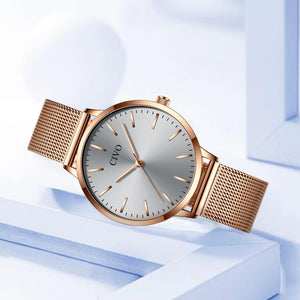 8060C | Quartz Women Watch | Mesh Band