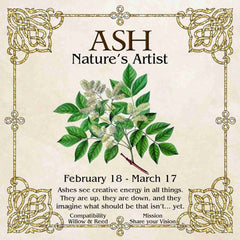 Celtic Tree Zodiac - ASH, Nature's Artist - February 18-March 17
