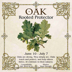 Celtic Tree Zodiac - OAK, The Rooted Protector June 10 - July 7