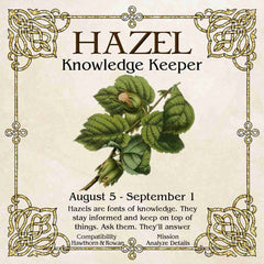 Celtic Tree Zodiac - HAZEL, The Knowledge Keeper August 5 - September 1
