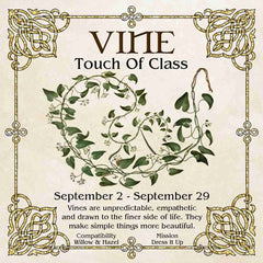 Celtic Tree Zodiac - VINE, A Touch Of Class September 2-September 29
