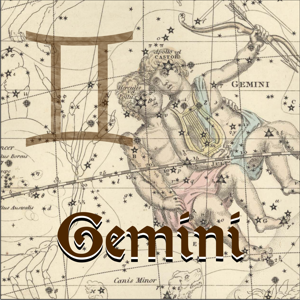 GEMINI - THE TWINS – Celtic Art Store / Ravensdaughter Designs