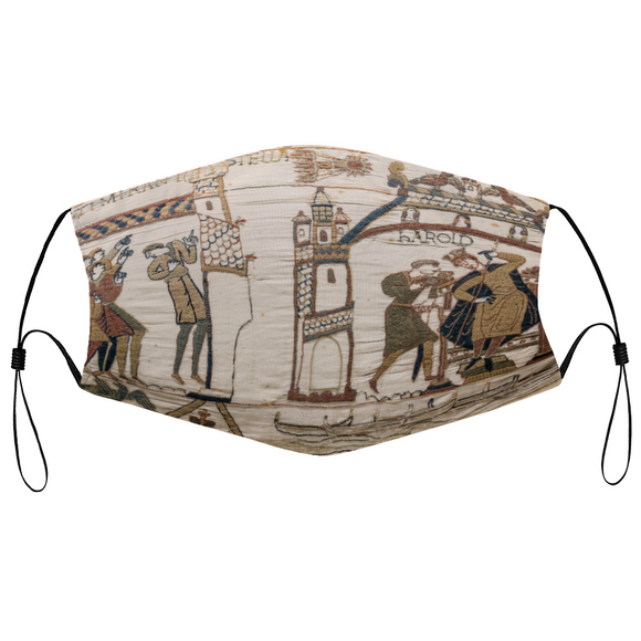 bayeux tapestry, tapestry, norman, saxon, viking, medieval, harold, edward, comet england, britain, france, normandy