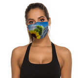 Solar Panel Face Mask
