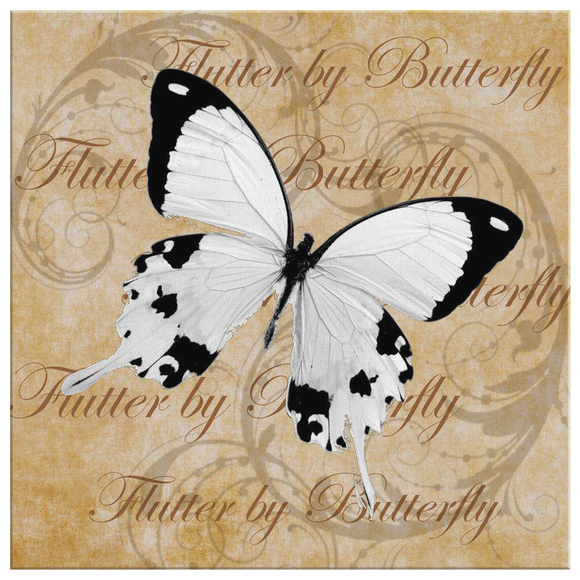 butterfly,butterflies,dragonfly,dragonflies,butterflies and dragonflies,nature,digital,collage