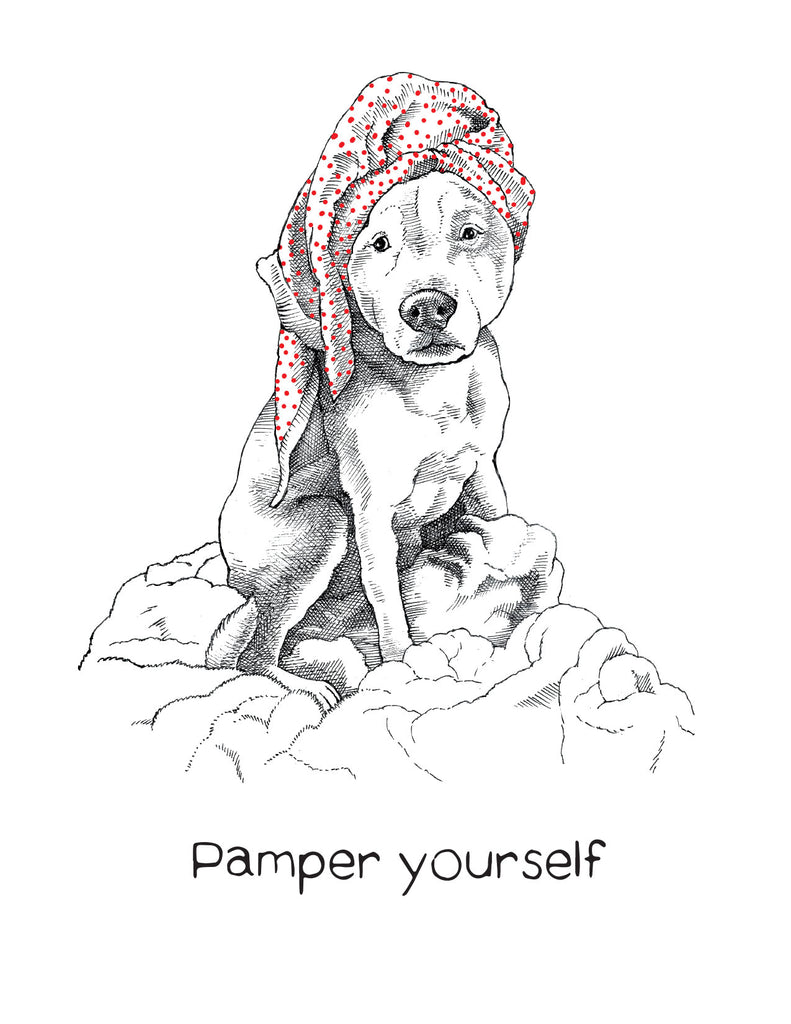 dogs + cats - Pamper Yourself