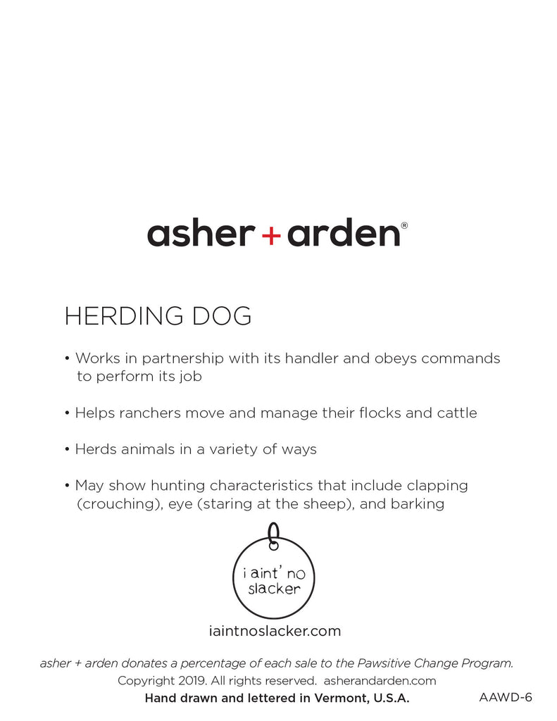 dogs + cats - Herding Dog