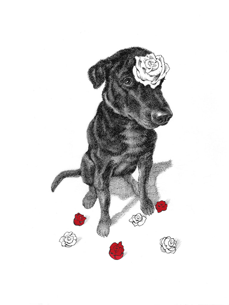 rose dog - love card