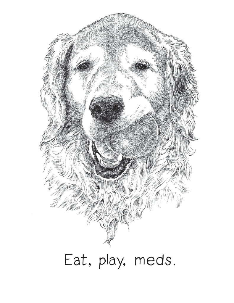 Eat, play, meds.