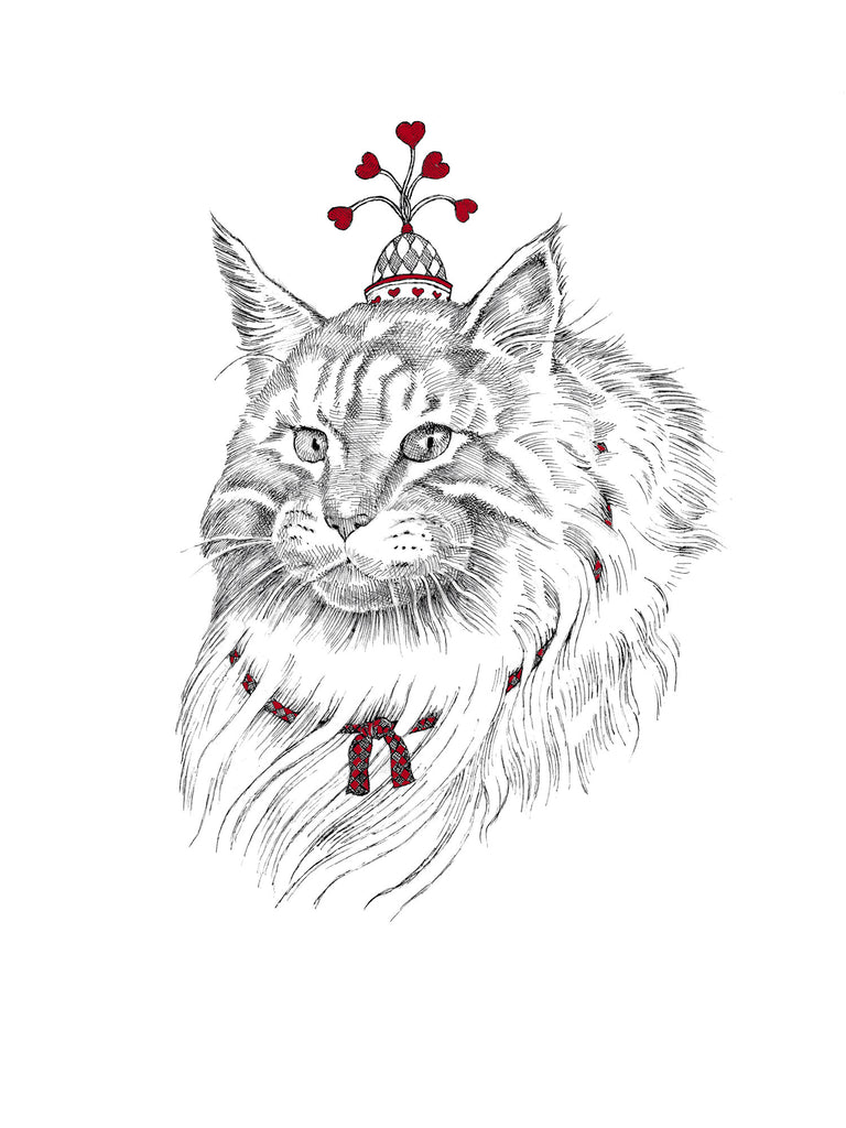 main coon - love card