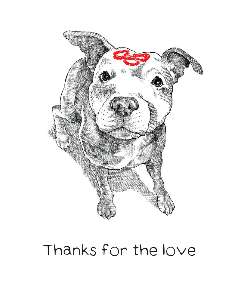 dogs + cats - Thank You Card