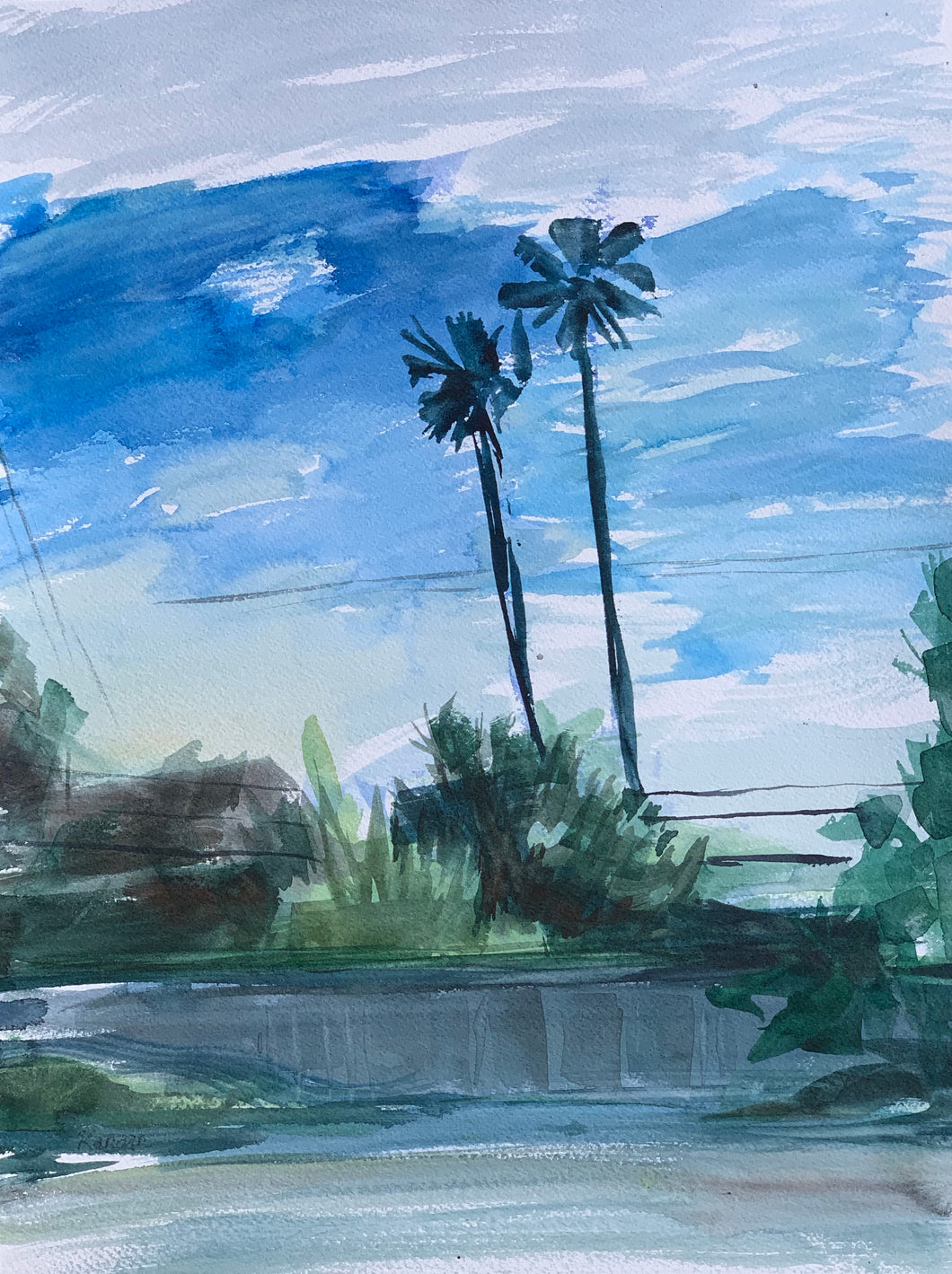 Palms over a Fence, San Carlos Drive
