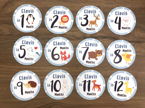 Blue Baby Clothes Bouquet & 12 Personalized First Year Stickers (Animal Print)