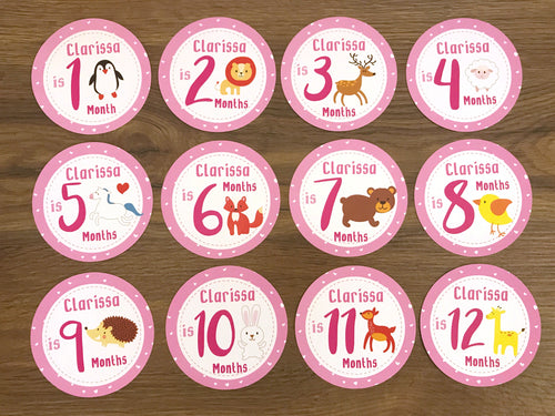 Pink Baby Clothes Bouquet & 12 Personalized First Year Belly Stickers (Animal Print)