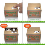 FEW IN STOCK! Flash Sale Today!Matney Stealing Coin Cat Box- Piggy Bank - White Kitty - English Speaking