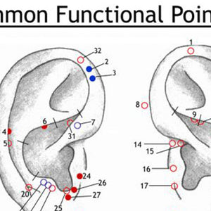 Ear Wall Chart of Common Functional Points
