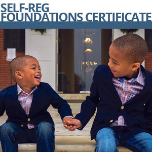 Self-Reg Foundations Certificate Program