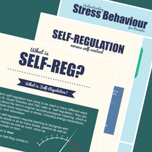 Self-Reg Infographics