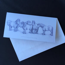 "Load image into Gallery viewer, Shetland Pony Card - ""All the best things come in small packages"""