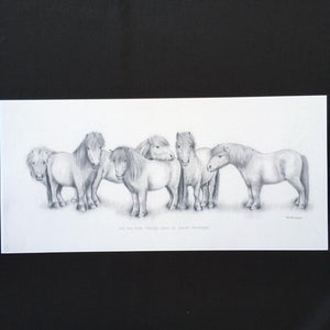 "Shetland Pony Print - ""All the best things come in small packages"""