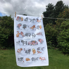 Load image into Gallery viewer, Shetland Pony Tea Towel