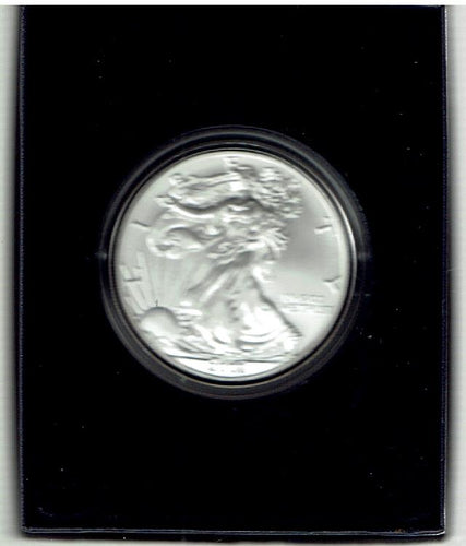 US Silver 1 Oz. Proof 2007 Burnished American Eagle