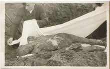 Load image into Gallery viewer, Germany Morbid WW II Postcard of exhumed body, To be given a decent burial.