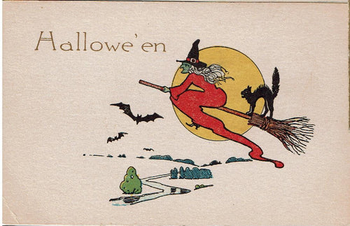 Halloween Post Card Witch-Bats & Black Cat