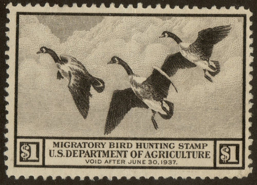 RW3 1937 Federal Duck Stamp