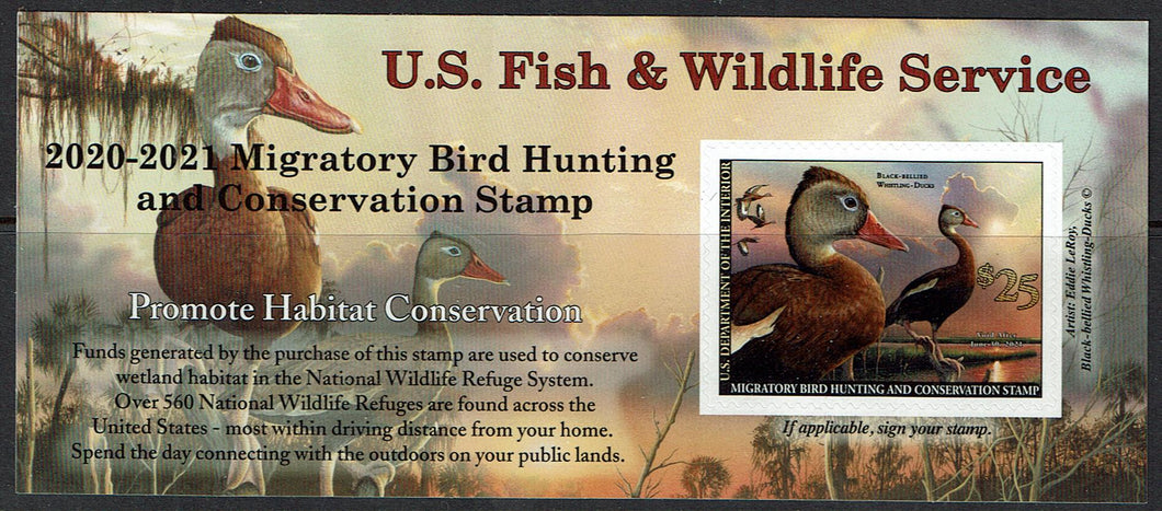 $25 Black-Bellied Whistling Duck Hunting Permit