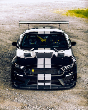 Ford Shelby Mustang GT350 canvas car posters