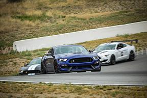 Ford Shelby GT350s on Track