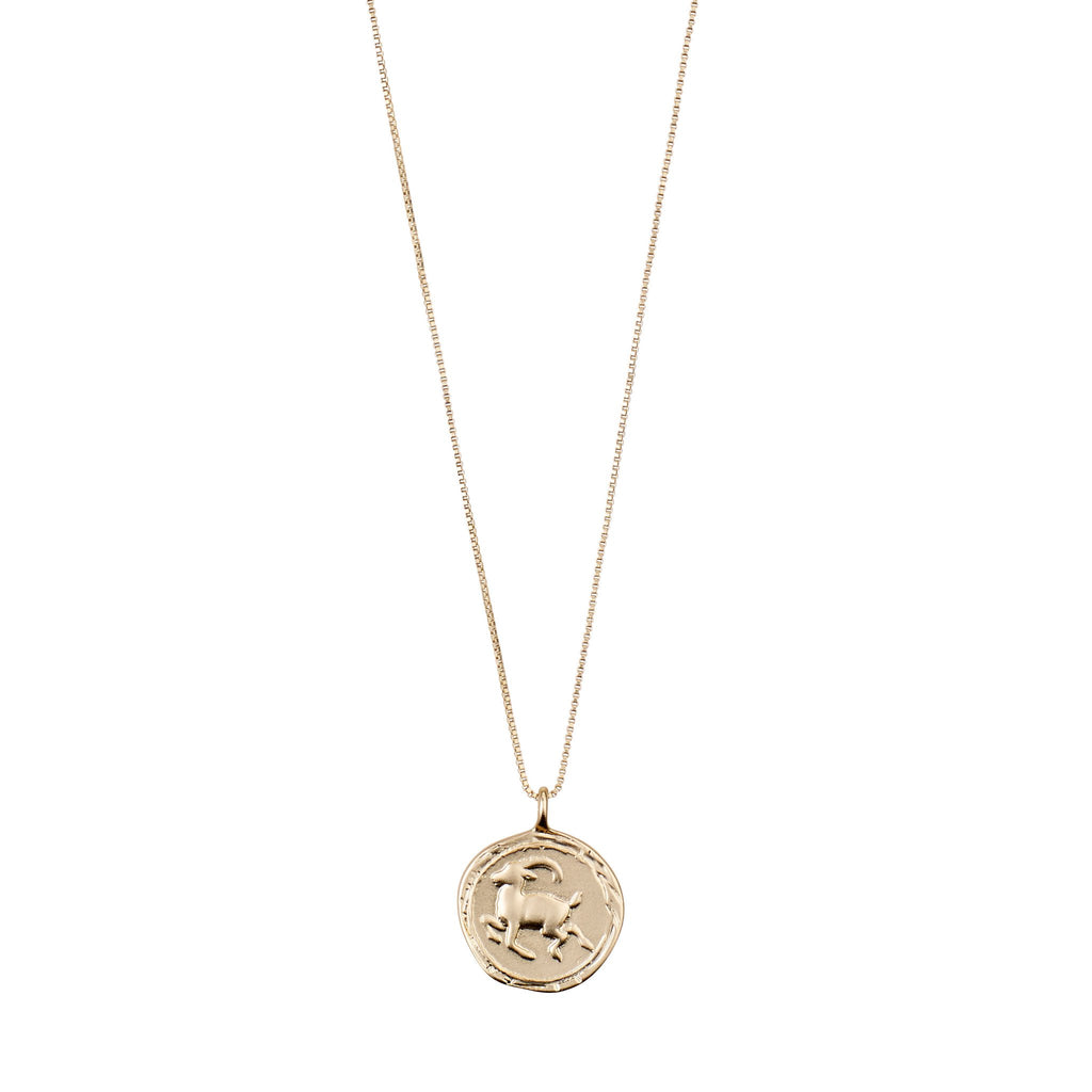 Capricorn Necklace Gold