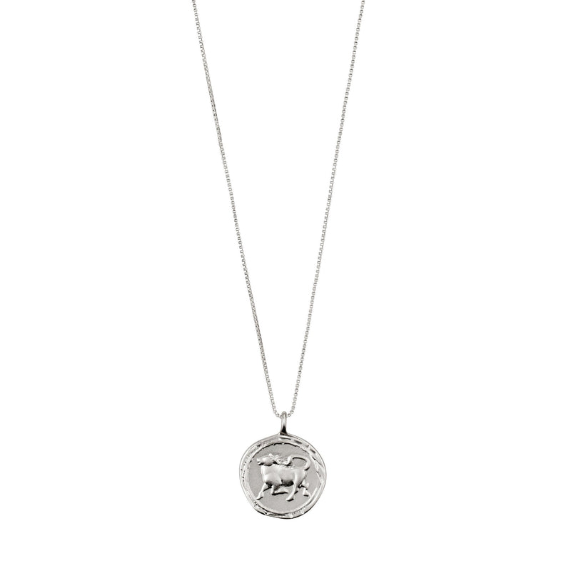 Taurus Necklace Silver