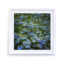 Load image into Gallery viewer, Field of Blue, Framed