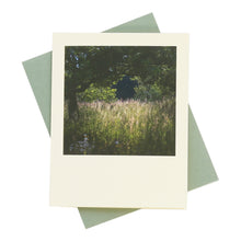 Load image into Gallery viewer, West Sussex Evening Light Greeting Card