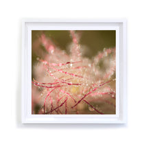 Load image into Gallery viewer, Red Swirls 1, Framed