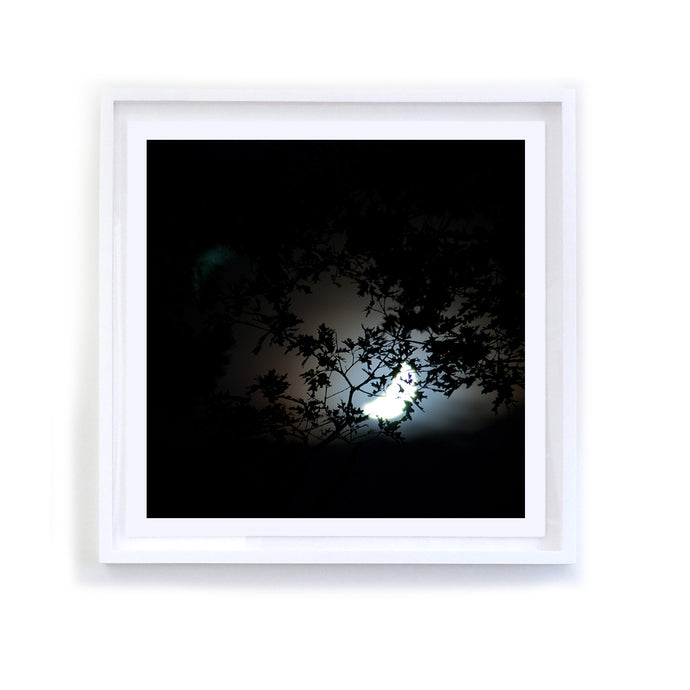 Waning Moon, Framed